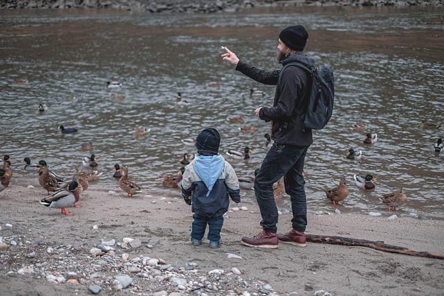 Och, wie entschleunigt der Alltag doch sein kann. Wir haben nur wenige Meter bis zum Salzach-Fluss und einer vollkommen neuen Welt der Entspannung. Heute haben wir die Brotreste an die Enten  verfüttert.⠀ ⠀ #salzach #laufenoberbayern #duckfeeding #bayern #linusontour